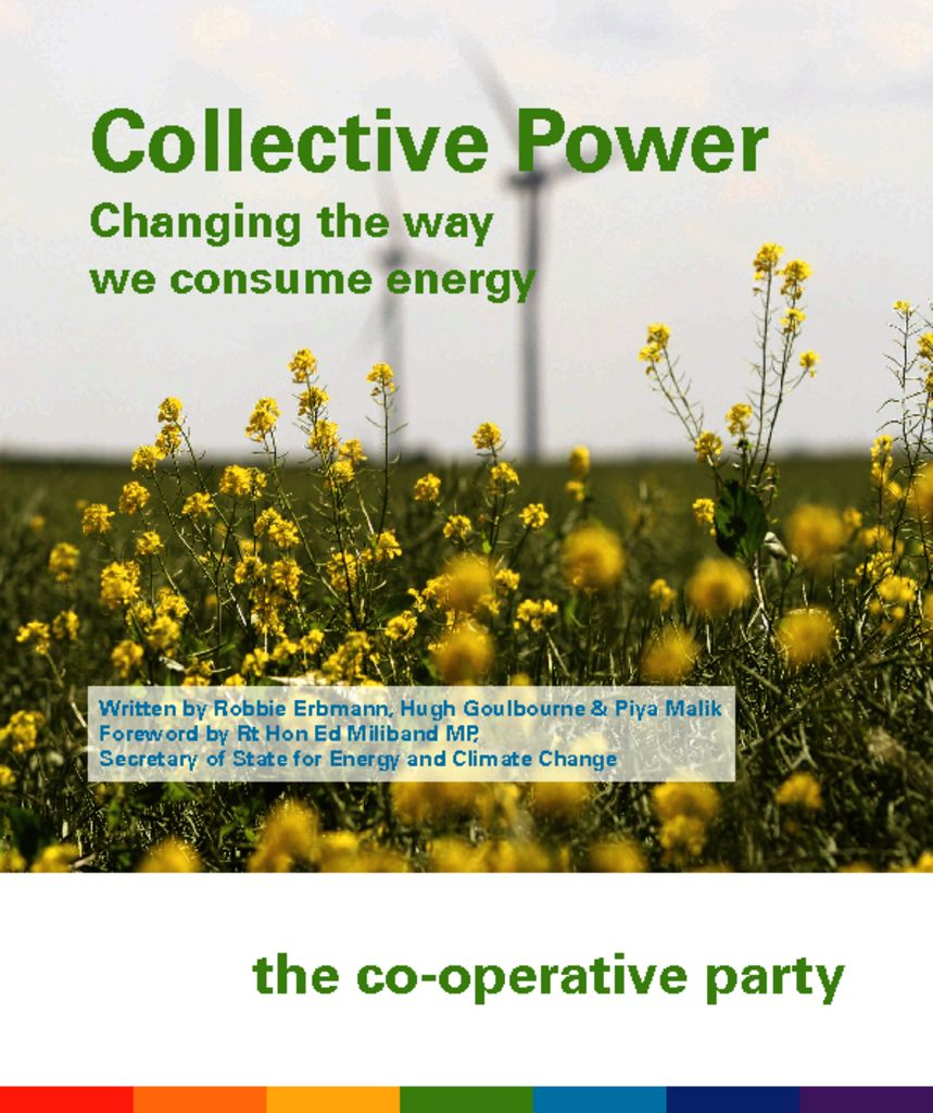 thumbnail of Collective-Power-pamphlet-low-res