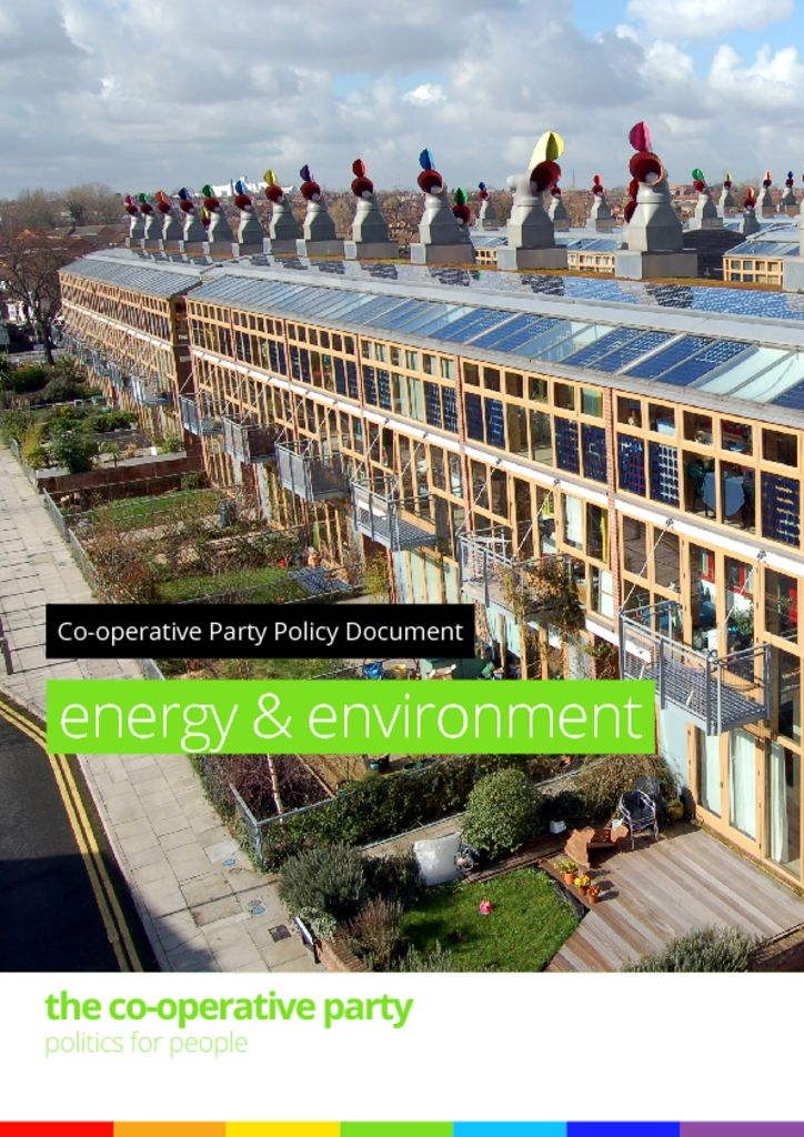 thumbnail of Energy and environment