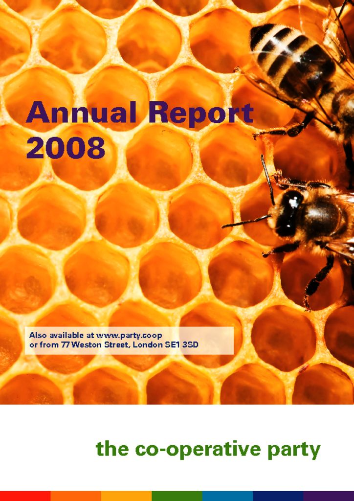 thumbnail of Annual Report 2008