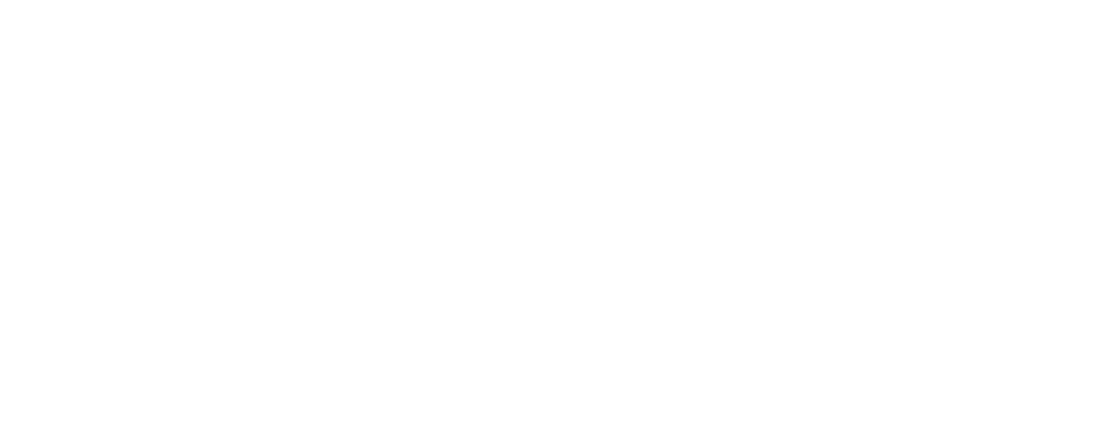 Logo Cropped White@4x