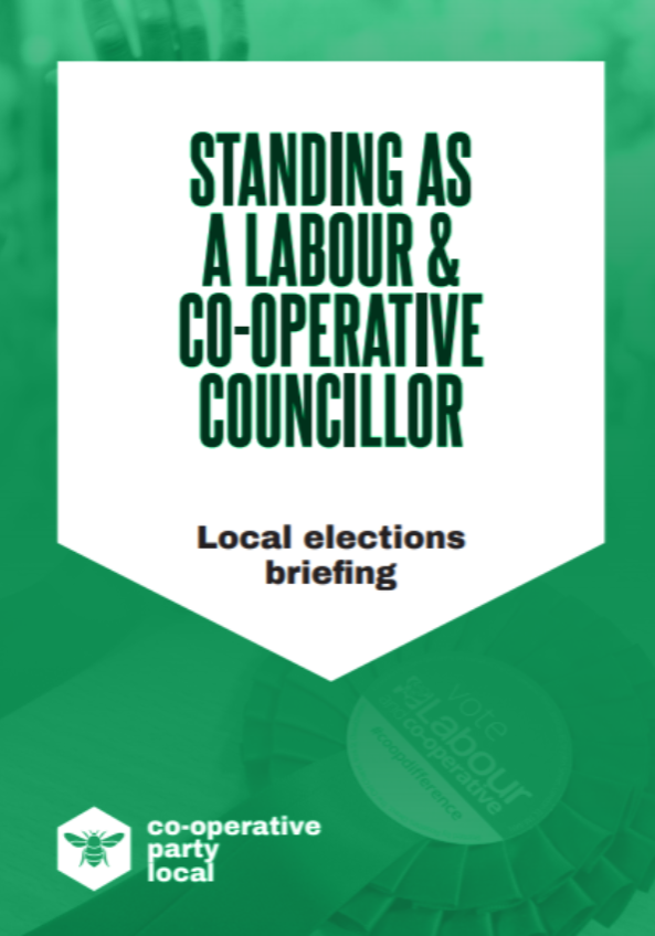 LocalElectionsBriefing2020